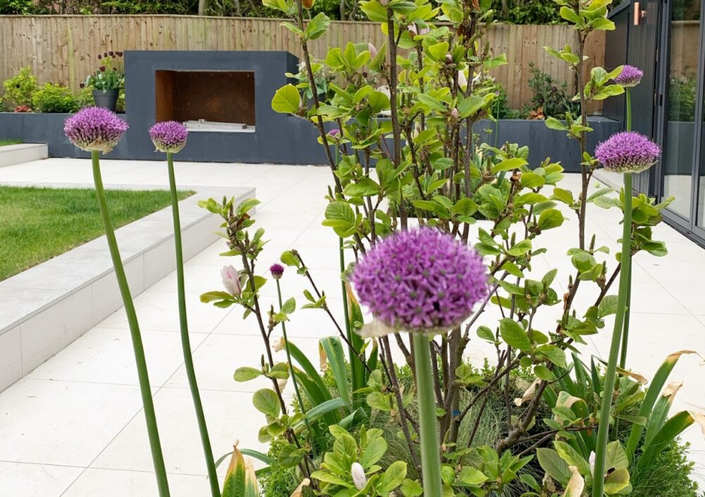 Garden landscaping design service Manchester Cheshire from Plantlife Garden Design by Frances Kandel